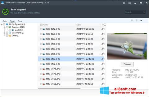 Скріншот USB Flash Drive Recovery для Windows 8