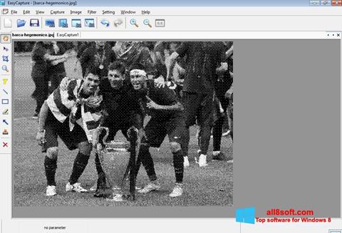 Скріншот EasyCapture для Windows 8