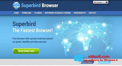 Скріншот Superbird для Windows 8