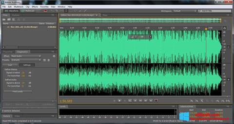 Скріншот Adobe Audition для Windows 8
