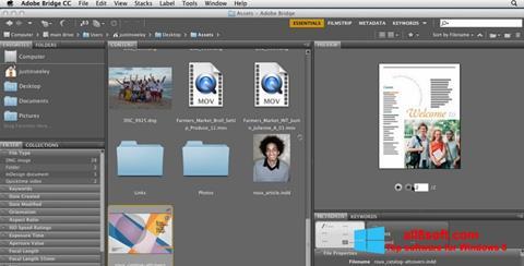 Скріншот Adobe Bridge для Windows 8