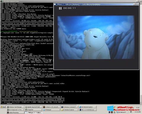 Скріншот MPlayer для Windows 8