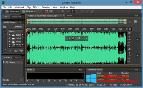 Скріншот Adobe Audition CC для Windows 8